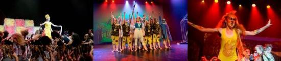 Photograph of Wildcards shown for Highland Schools in Rock Challenge