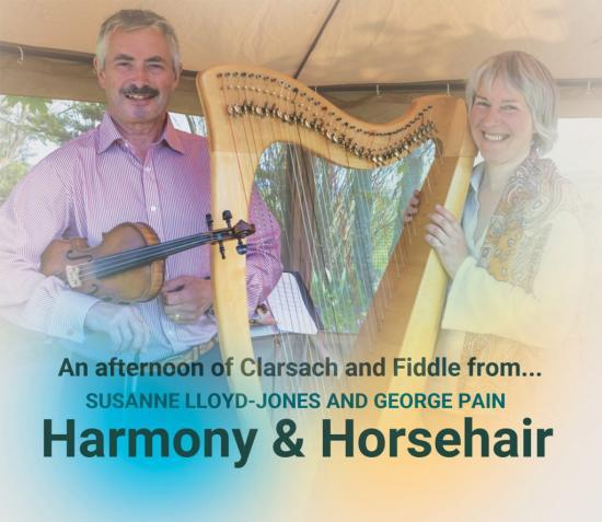 Photograph of HARMONY and HORSEHAIR JULY 16, 2017